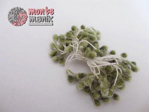 putik-bunga-kaca-hijau-olive