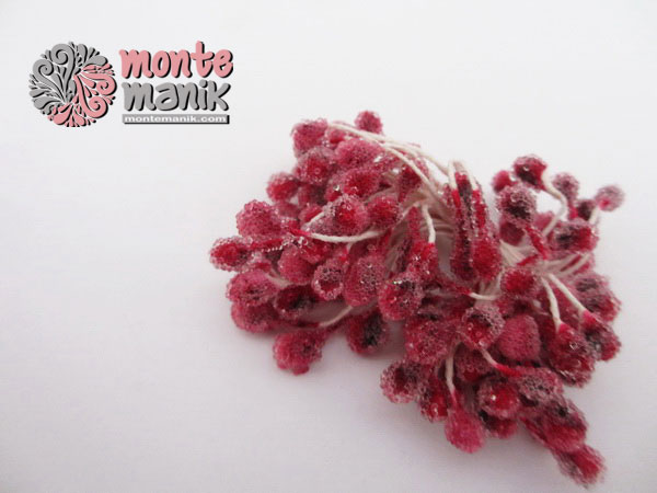 putik-bunga-kaca-merah
